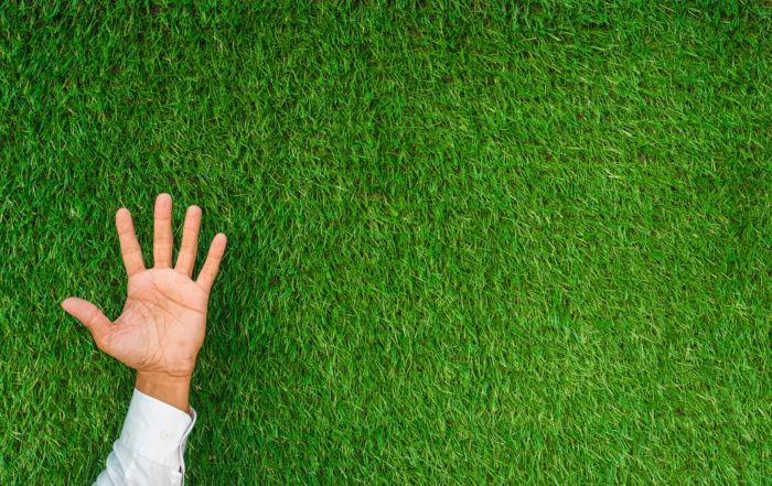 5 Ways on How To Boost Tendering Success By Being Carbon Efficient